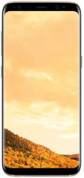 Samsung Galaxy S8 DuoS 64Gb Gold (SM-G950F/DS)
